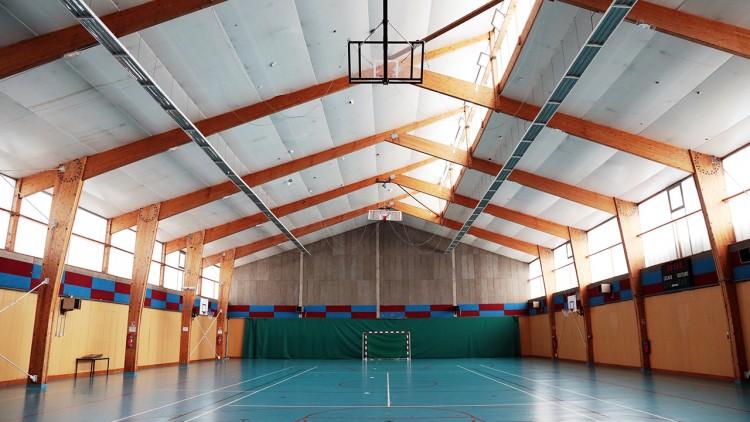 sport-basket-handball